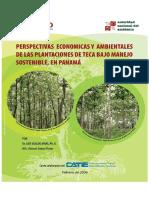 DIAGNOSTICO TECA 2006.pdf