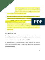 MONOGRAFIA DEL PROGRAMA TECHO PROPIO.doc