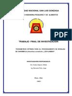 Inv.2019 Rodajas de Carambola