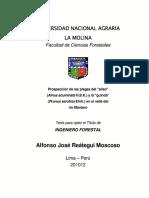 tesis de melampsoridium.pdf