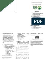 Universidad Tecnologica de Los Andes Filo