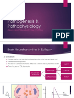 Pathogenesis and Pathophysiology of Epilepsy