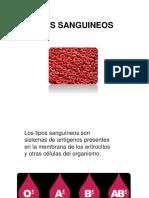 TIPOS SANGUINEOS