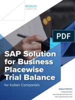 Sap Solution for Business Placewise Trial Balance