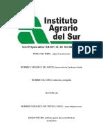 monografia reglas ortograficas2.docx