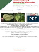 Lotta contro le principali malattie e parassiti del peperoncino.pdf