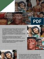 Presentación interculturalidad.pptx