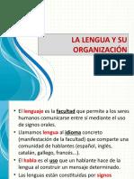 La lengua y su organización