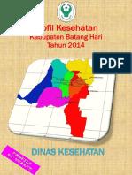 1504 Jambi Kab Batang Hari 2014 (1)