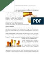 Cerveja — a Extrordinária Bebida Dourada