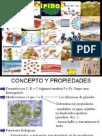 lipidos- fosfolipidos