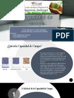 Capacidad de Campo(MONITOREO)