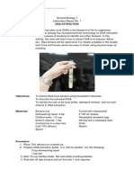 DNA Extraction Worksheet