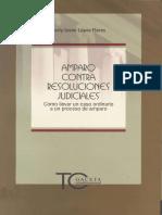LIBRO AMPARO CONTRA RESOLUCIONES JUDICIALES.pdf