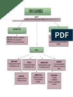 Mapa Conceptual Indicadores