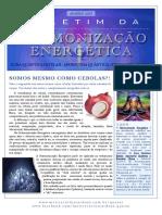 Boletim-da-Harmonização-Energética--Jan2013