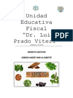 Remedio Casero Diabetes, Proyecto