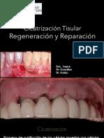 8- Regeneracion y Reparacion PDF