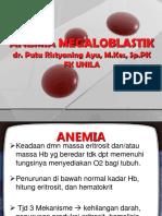 Dr. Putu an.megaloblastik
