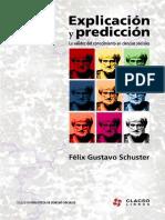 Schuster Felix - Explicacion y prediccion.pdf