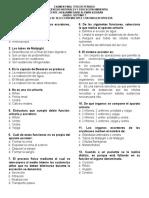 Examen Excrecion Septimo Grado C