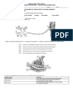 LEVELING WORKSHEET NATURAL SCIENCE SECOND TERM NINTH GRADE (1).docx