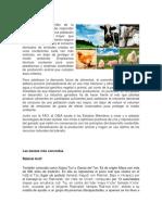 Producción pecuaria.docx