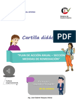 Cartilla Plan de Remediacion