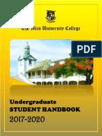 Mico university