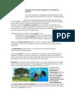 Fotosensibilización estudio en colombia