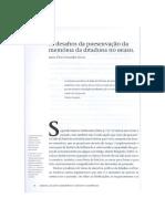 Os Desafios Da Preservação Da Memória Da Ditadura No Brasil