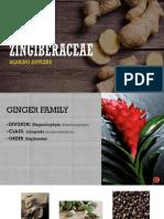 Zingiberaceae Pp 1