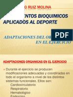adaptacionorganicasenelejercicio-120315214334-phpapp02