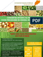 Food Processing DPR