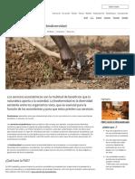 Servicios Ecosistémicos y Biodiversidad_Organización de Las Naciones Unidas Para La Alimentación y La Agricultura