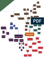 mapa conceptual NEOLÍTICO 2º eso