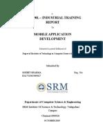 Report on mobile applocation development