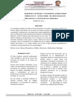 Articulo Final Del Trabajo Cientifico mamas  fibroquisticas