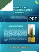 Preservación y Conservación Del Medio Ambiente Economia