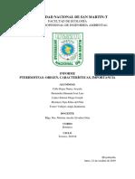 Peridofitas.pdf