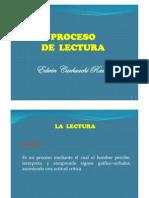 PROCESO DE LECTURA