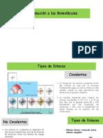 1. Introduccion a Las Biomoléculas