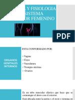 ANATOMIA Y FISIOLOGIA DEL SISTEMA PRODUCTOR FEMENINO.pptx