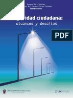 Alcances_y_desafios_de_la_seguridad_ciud.pdf