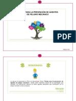 Memoria-módulo Introductorio_ Pautas Para La Prevención de Agentes de Peligro Mecánico