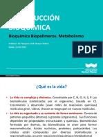 Bioquimica Metabolismo Carbohidratos