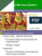 ELAINE_N._MARIEB_The_Nervous_System.pdf