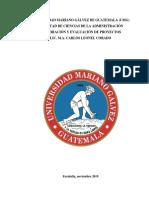 D PAN EVALUACION DE PROYECTOS.docx