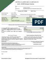 Domain Invoice 510354