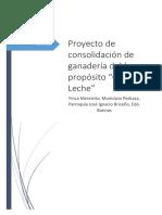 Proyecto Ganaderia Doble Proposito- Finca Mereycito